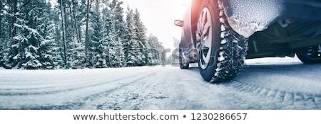 kaza · araba · ağaç · yol · orman · turuncu - stok fotoğraf © gemenacom