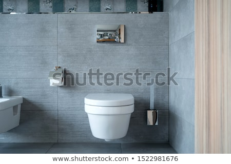 Modern tuvalet çanak banyo ev iç Stok fotoğraf © ajn