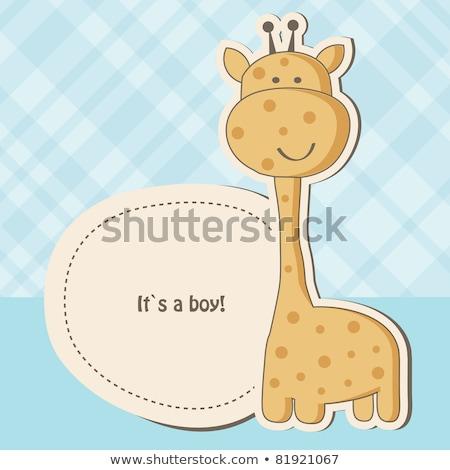 Baby · junge giraffe spielzeug cute schauen