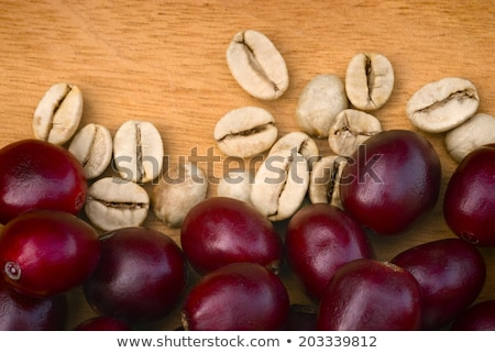 Dry green coffee beans (Coffea arabica) Stock photo © ziprashantzi