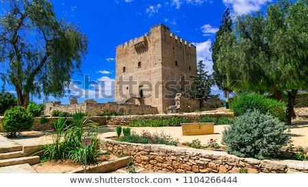 Roof of Kolossi Castle. Limassol. Cyprus Stock photo © Kirill_M