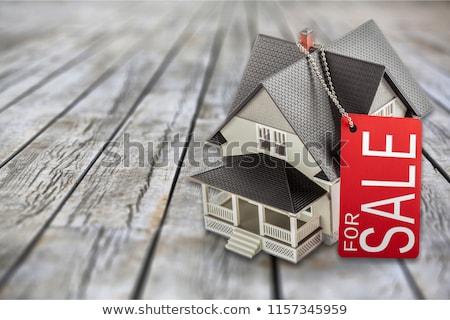 Ev satış kâğıt clothespin asılı halat Stok fotoğraf © slavick
