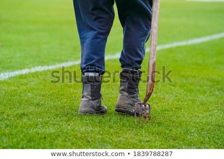 человека Постоянный рук травой поле молодые привлекательный Сток-фото © feedough