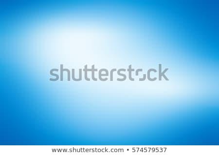 Jasne niebieski biały gradient abstrakcja korporacyjnych Zdjęcia stock © saicle