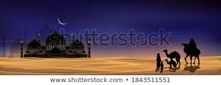 camels walking in evening with mosque Stock photo © SArts