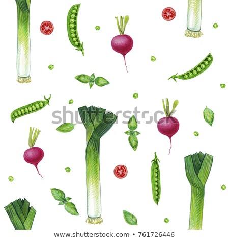 Сток-фото: Vintage · зеленый · вектора · стиль · текстуры