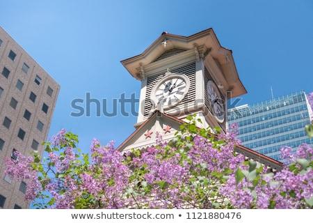 Holz Uhr Turm weiß isoliert Gebäude Stock foto © OleksandrO