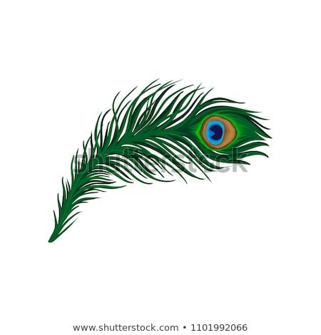 tattoo · kunst · ontwerp · pauw · collectie · illustratie - stockfoto © yopixart