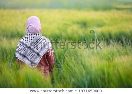 Homme · permanent · cultivé · blé · cultures · domaine - photo stock © stevanovicigor