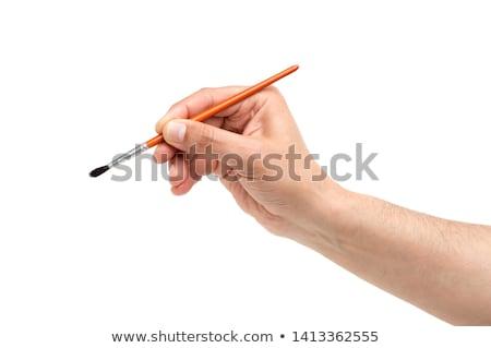 hand holding brushes isolated on white stock photo © julenochek