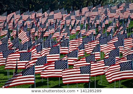 Jour icône emblème bouton drapeau américain USA Photo stock © Oakozhan