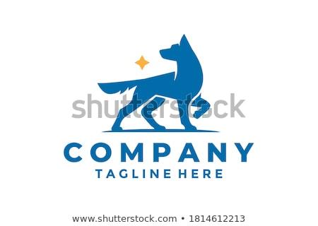 Pasterz psa tekst w stylu retro ilustracja zły Zdjęcia stock © patrimonio