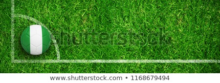 Football in nigeria colours against closed up view of grass Stock photo © wavebreak_media