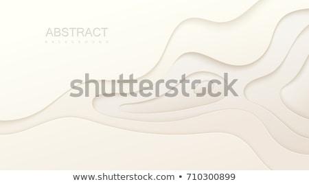 Ondulado estilo negócio papel abstrato fundo Foto stock © SArts