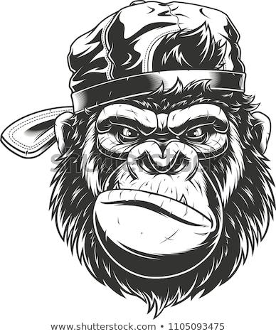 Cartoon Angry Baseball Player Monkey Stock photo © cthoman