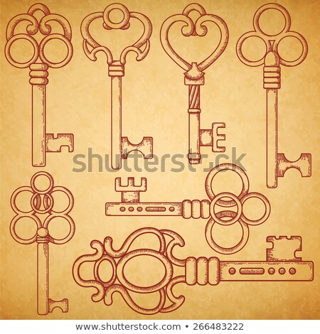 texture of vintage keys isolated on white background vector cartoon close up illustration stock photo © lady-luck