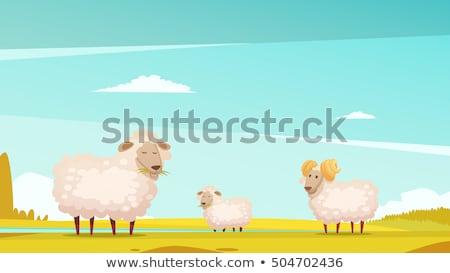 Karikatür koyun gökyüzü örnek uçan kanatlar Stok fotoğraf © cthoman