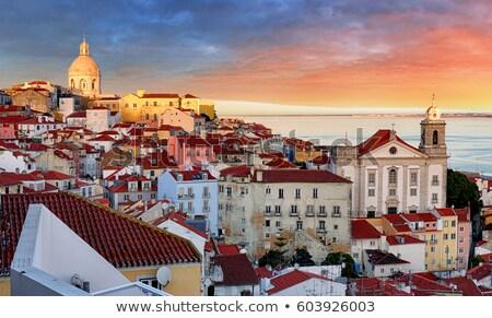 lisbon cathedral and alfama district stock photo © joyr