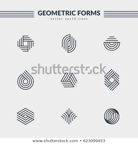 abstract star geometric logo symbol vector Stock photo © blaskorizov