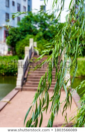 Small stone path in chinese village Stock photo © Juhku