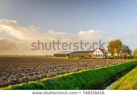 Kırsal çiftlik ev manzara örnek doğa Stok fotoğraf © bluering