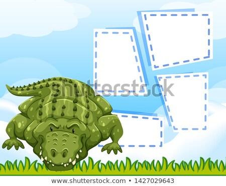 aligator blank frame template stock photo © bluering