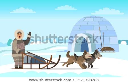 ártico expedição iglu casa vetor Foto stock © robuart