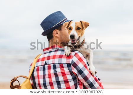 Dog on host`s hands. Stock photo © vkstudio