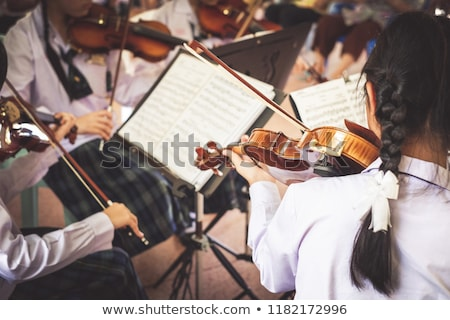 woman standing playing violin music Stock photo © yupiramos