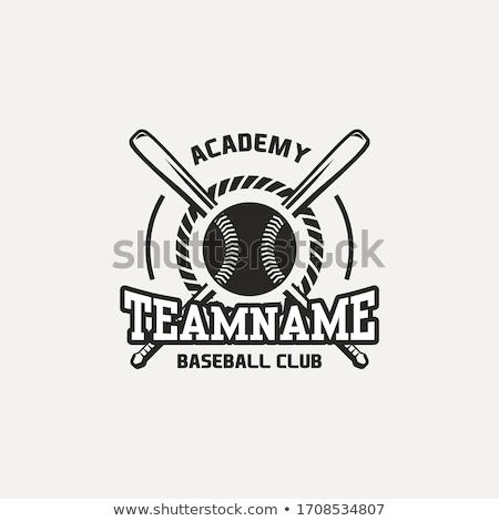 Beysbol sopası top spor oyun poster vektör Stok fotoğraf © pikepicture