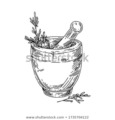 mortar and pestle Stock photo © FOKA