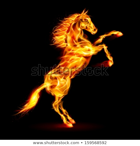 At yangın ahşap sanat yakıt volkan Stok fotoğraf © luiscar