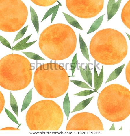 акварель · иллюстрация · груши · аннотация · фрукты · фон - Сток-фото © galyna