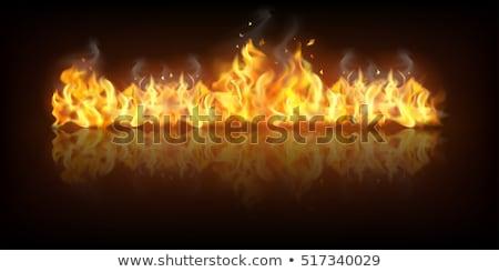 Tűz láng függőleges szalag textúra absztrakt Stock fotó © carodi