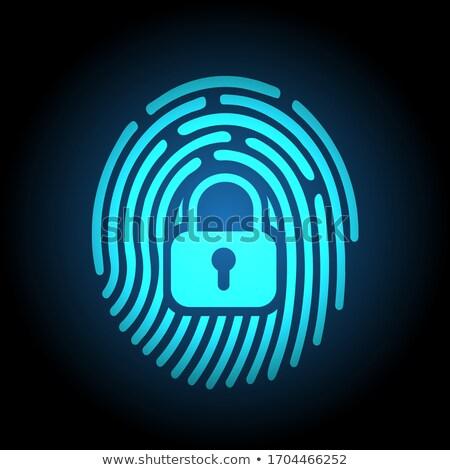 fingerprint security digital stock photo © idesign