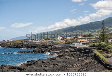 coastal settlement at the Azores Stock photo © prill
