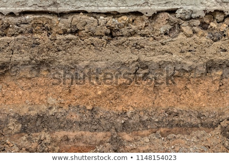 Broken Concrete Pipe Stock photo © rhamm