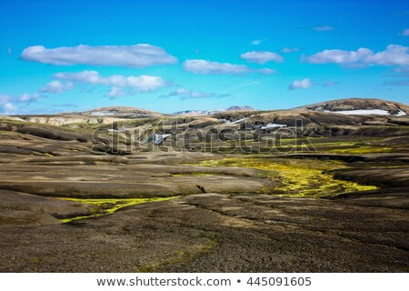 lava landscape with moss Stock photo © Hofmeester