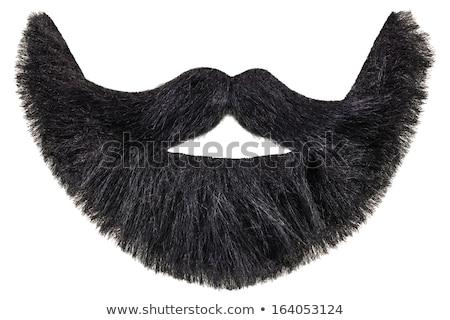 Sahte sakal karikatür adam Stok fotoğraf © blamb