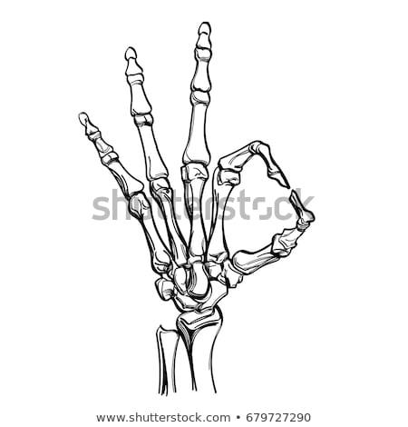 Mutat csontváz kéz pálma felirat gyógyszer Stock fotó © pterwort