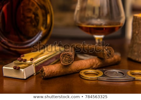 alcohol and cigar Stock photo © M-studio