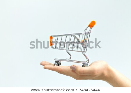 winkelwagen · hand · witte · business · achtergrond · metaal - stockfoto © Discovod