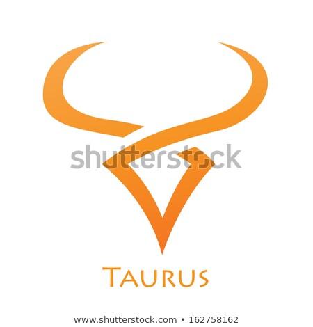 simplistic taurus zodiac star sign stock photo © cidepix
