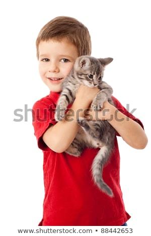 enyém · kiscica · fiú · néz · macska · haj - stock fotó © meinzahn