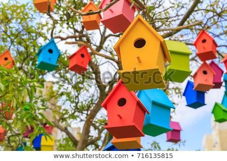 old blue birdhouse on the tree Stock photo © ultrapro