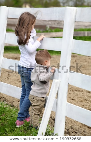 Pre-teen girl and Baby boy on the a white picket fence beside th Stock photo © vladacanon