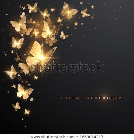 Kelebek ışık örnek vektör soyut Stok fotoğraf © auimeesri