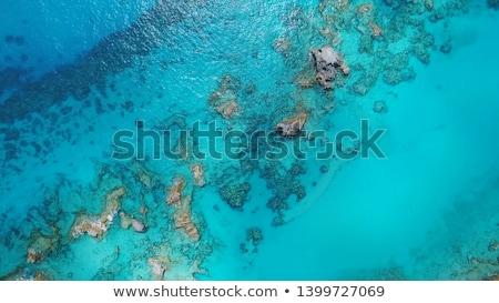 voeten · zomer · veel · kleurrijk · strand - stockfoto © arenacreative