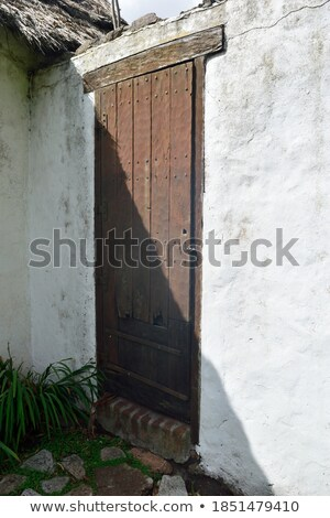 White Door in an Adobe Wall Stock photo © rhamm