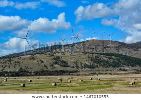 Windmill on a hill Stock photo © olandsfokus